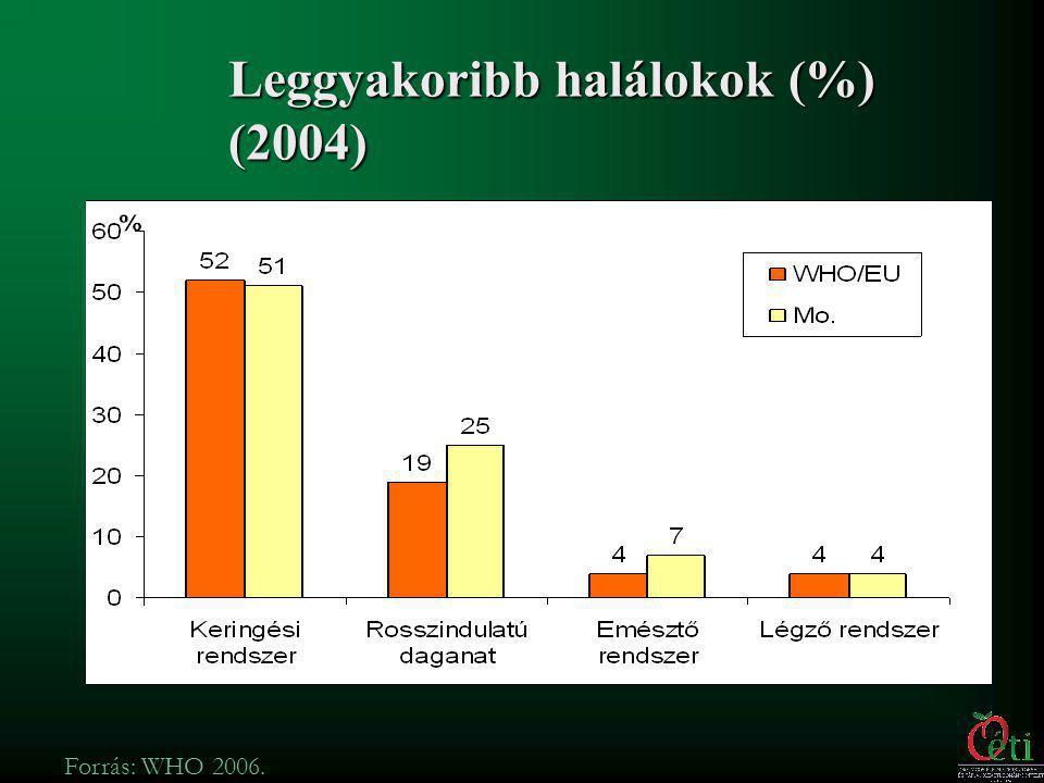 Leggyakoribb halálokok (%) (2004)