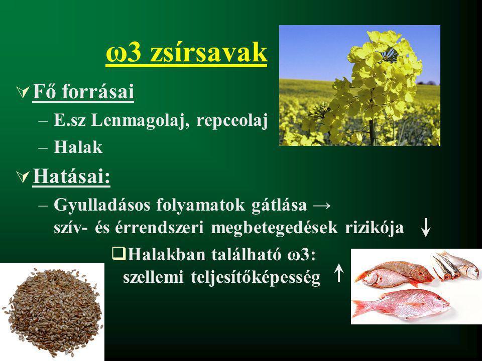 ω3 zsírsavak Fő forrásai Hatásai: E.sz Lenmagolaj, repceolaj Halak