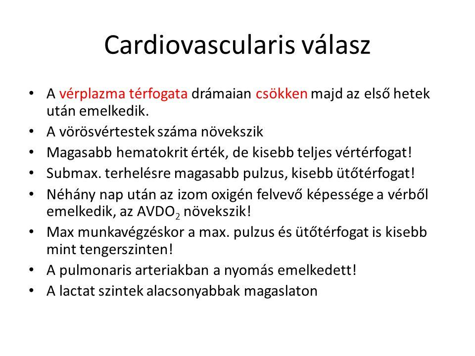 Cardiovascularis válasz