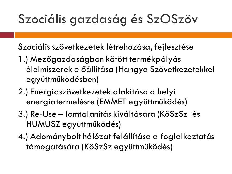 Szociális gazdaság és SzOSzöv
