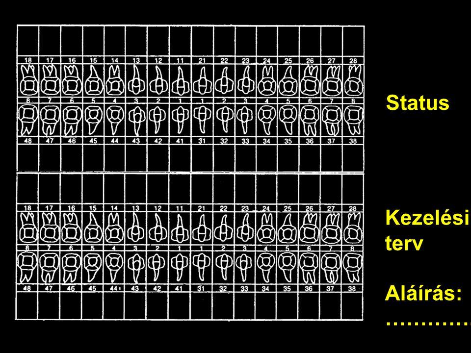 Status Kezelési terv Aláírás: ………….