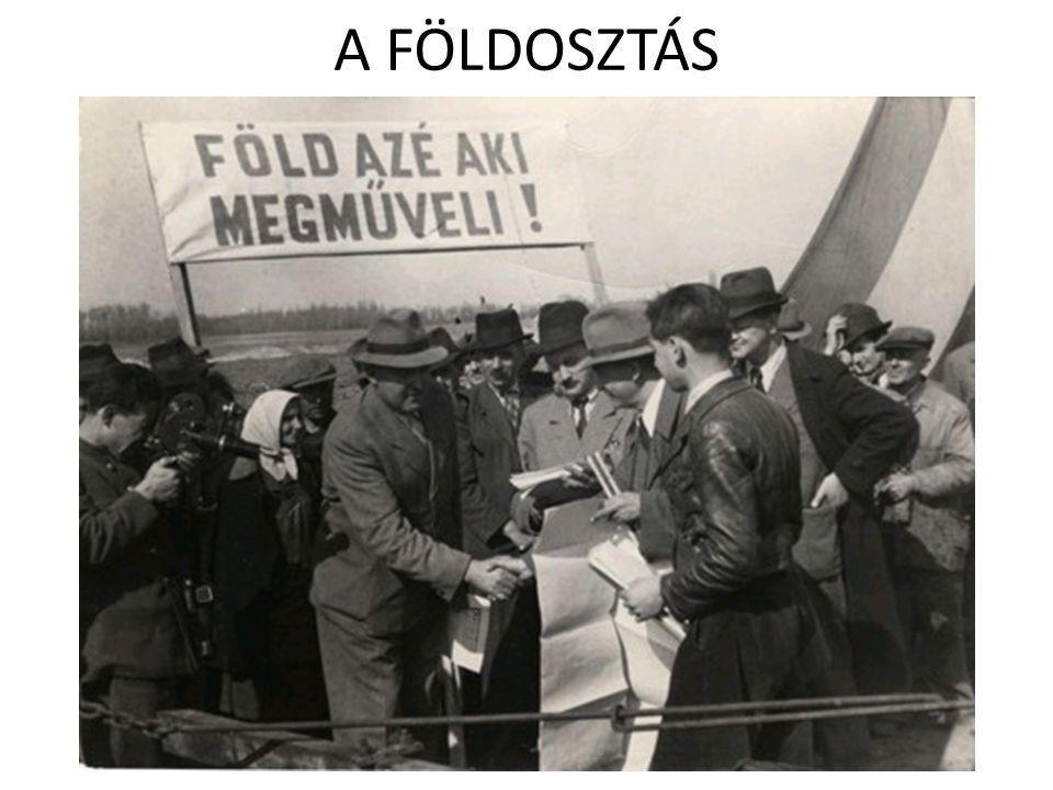 A FÖLDOSZTÁS