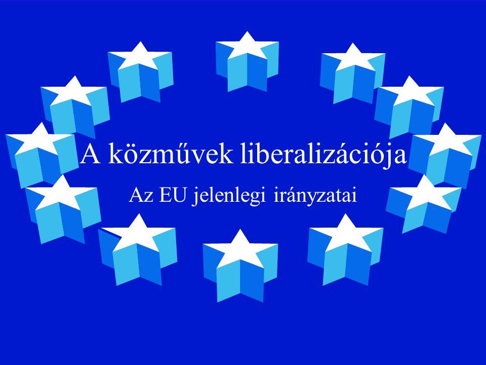 A közművek liberalizációja