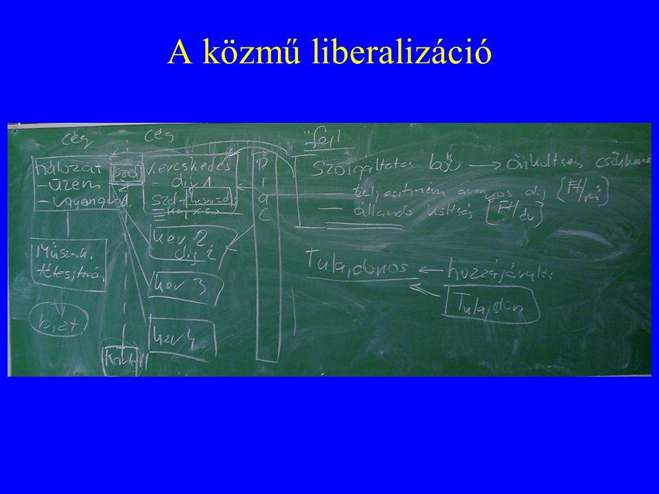 A közmű liberalizáció