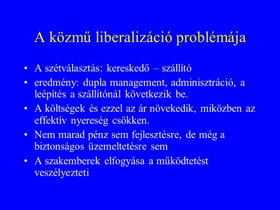 A közmű liberalizáció problémája