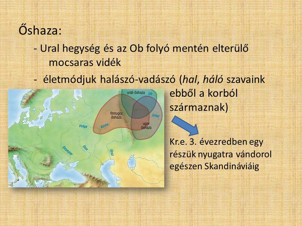 Őshaza: - Ural hegység és az Ob folyó mentén elterülő mocsaras vidék