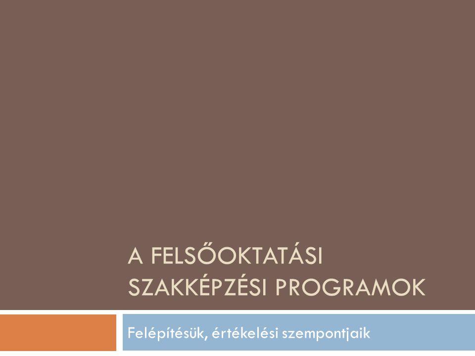 A felsőoktatási szakképzési programok