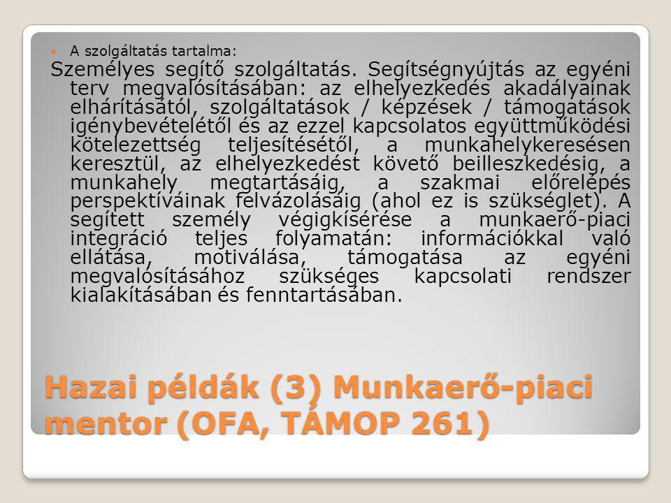 Hazai példák (3) Munkaerő-piaci mentor (OFA, TÁMOP 261)
