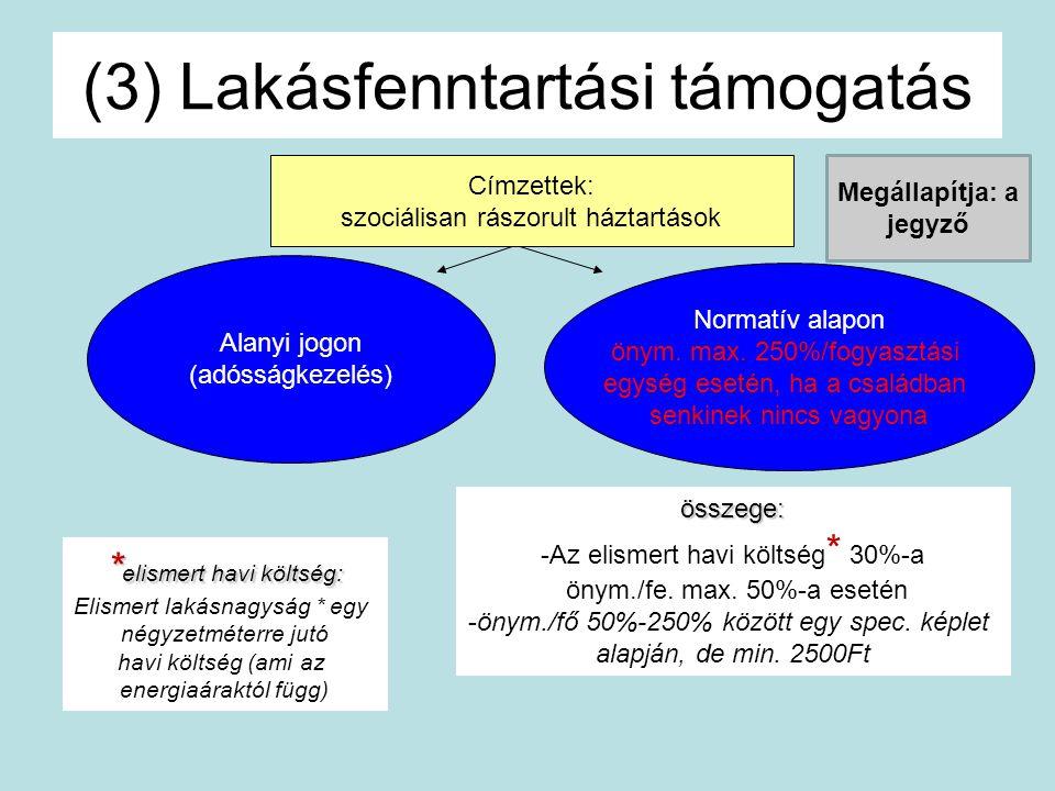 (3) Lakásfenntartási támogatás