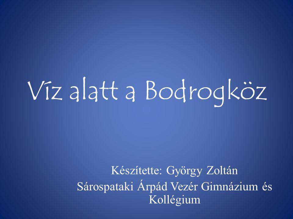 Víz alatt a Bodrogköz Készítette: György Zoltán