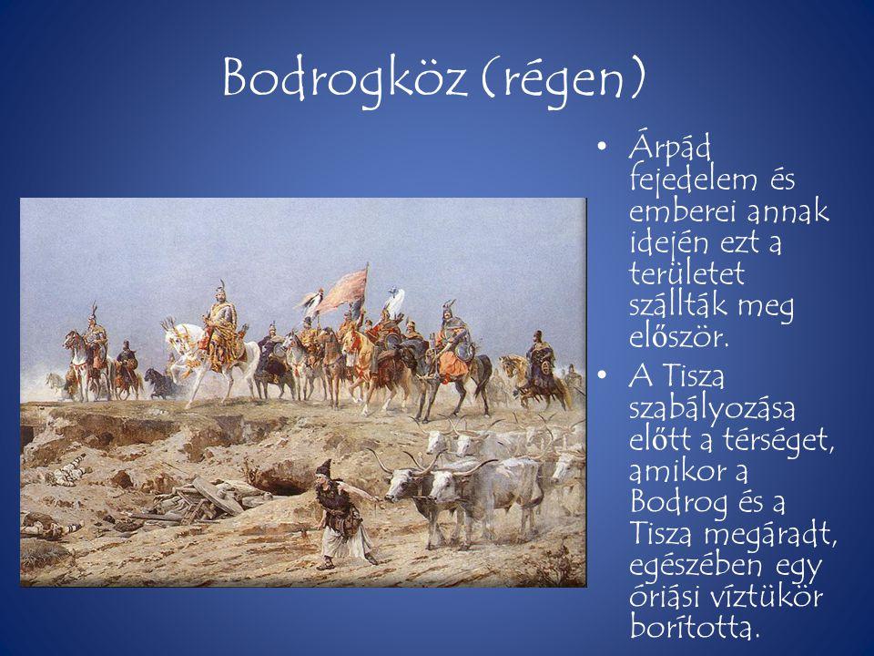 Bodrogköz (régen) Árpád fejedelem és emberei annak idején ezt a területet szállták meg először.