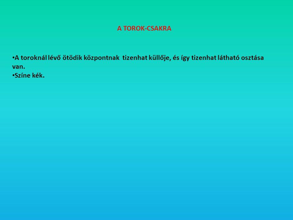 A TOROK-CSAKRA A toroknál lévő ötödik központnak tizenhat küllője, és így tizenhat látható osztása van.