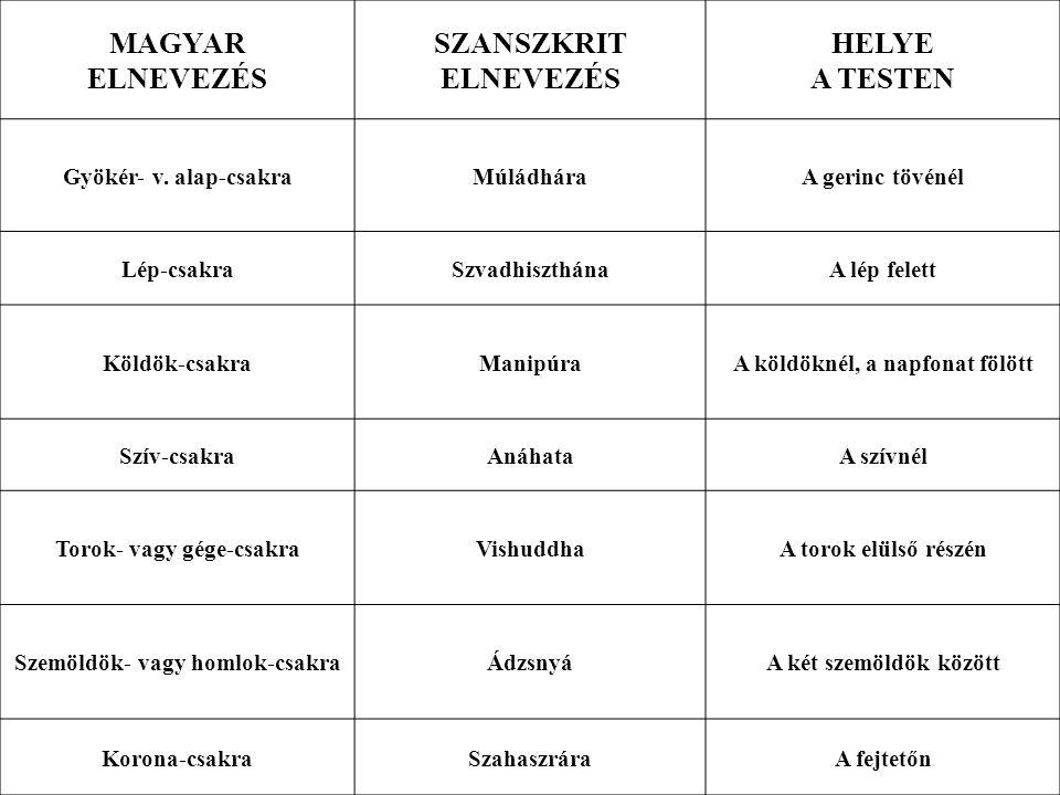 MAGYAR ELNEVEZÉS SZANSZKRIT ELNEVEZÉS HELYE A TESTEN