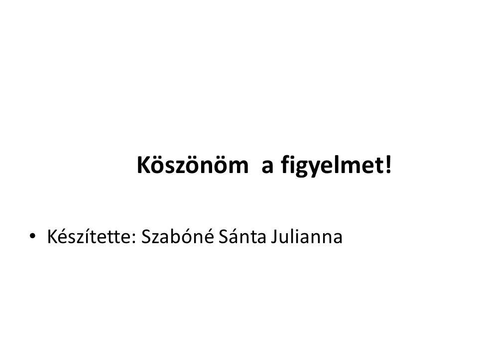 Köszönöm a figyelmet! Készítette: Szabóné Sánta Julianna