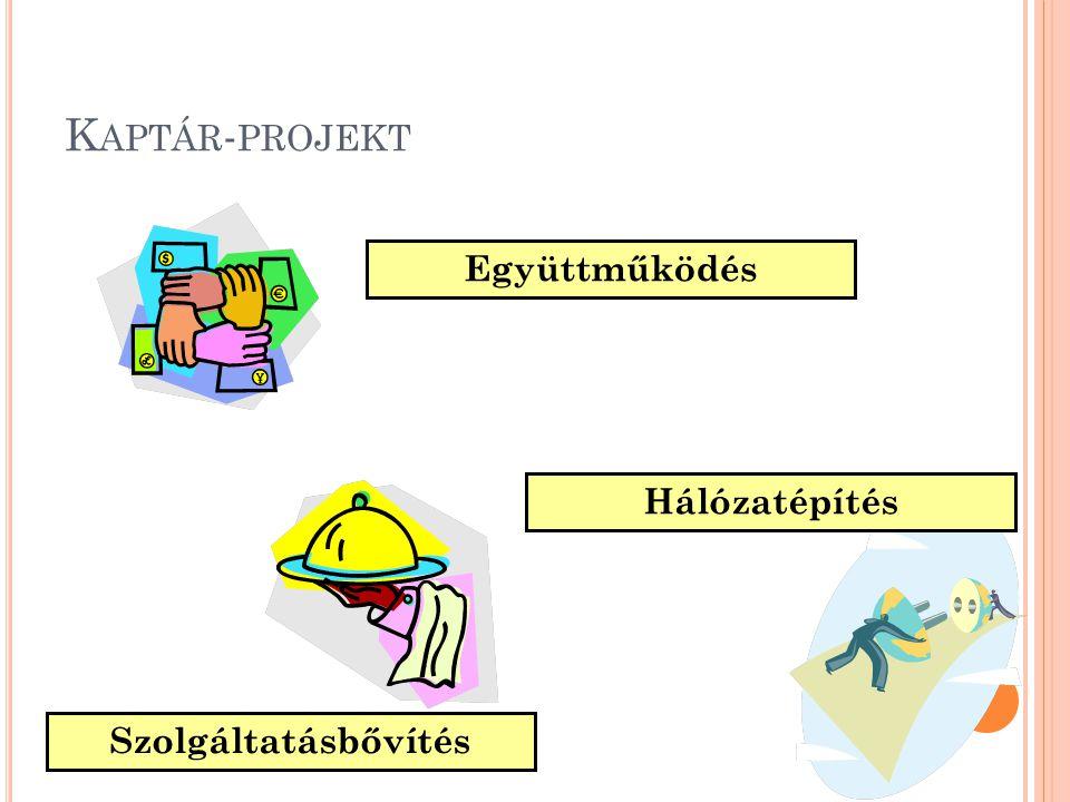 Kaptár-projekt Együttműködés Hálózatépítés Szolgáltatásbővítés