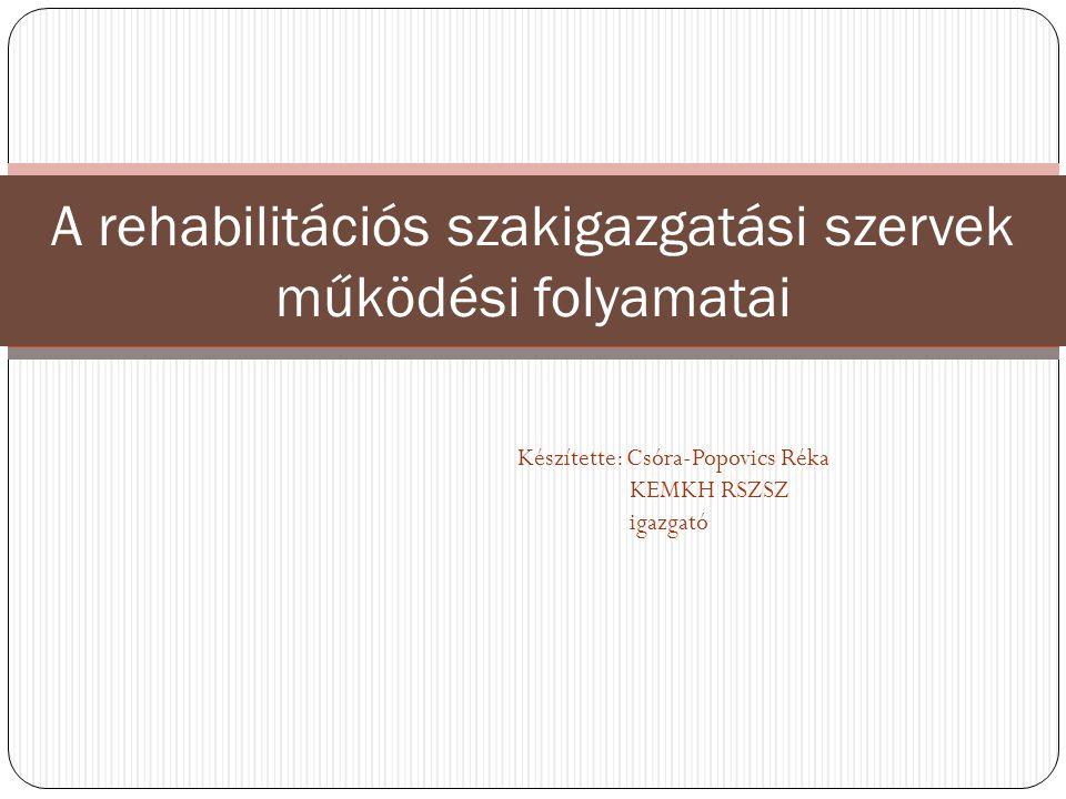 A rehabilitációs szakigazgatási szervek működési folyamatai
