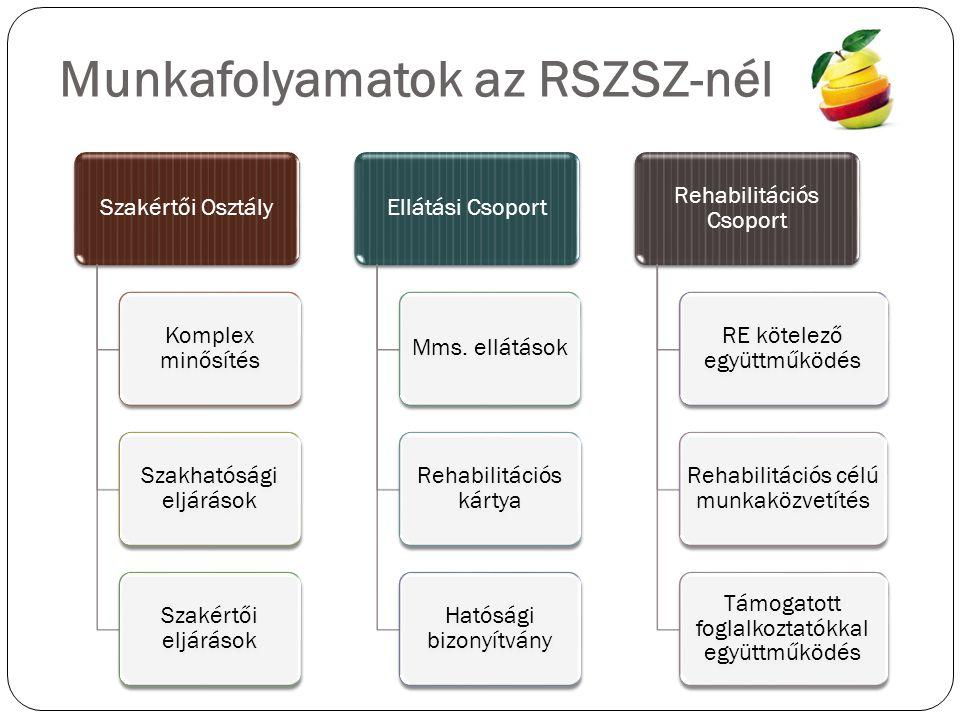 Munkafolyamatok az RSZSZ-nél