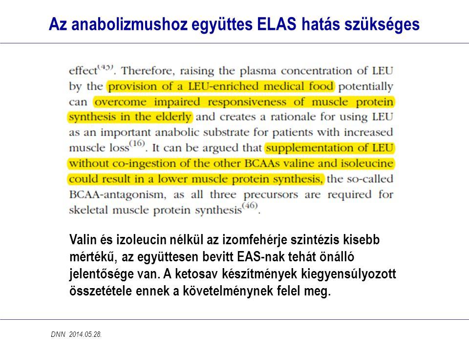 Az anabolizmushoz együttes ELAS hatás szükséges