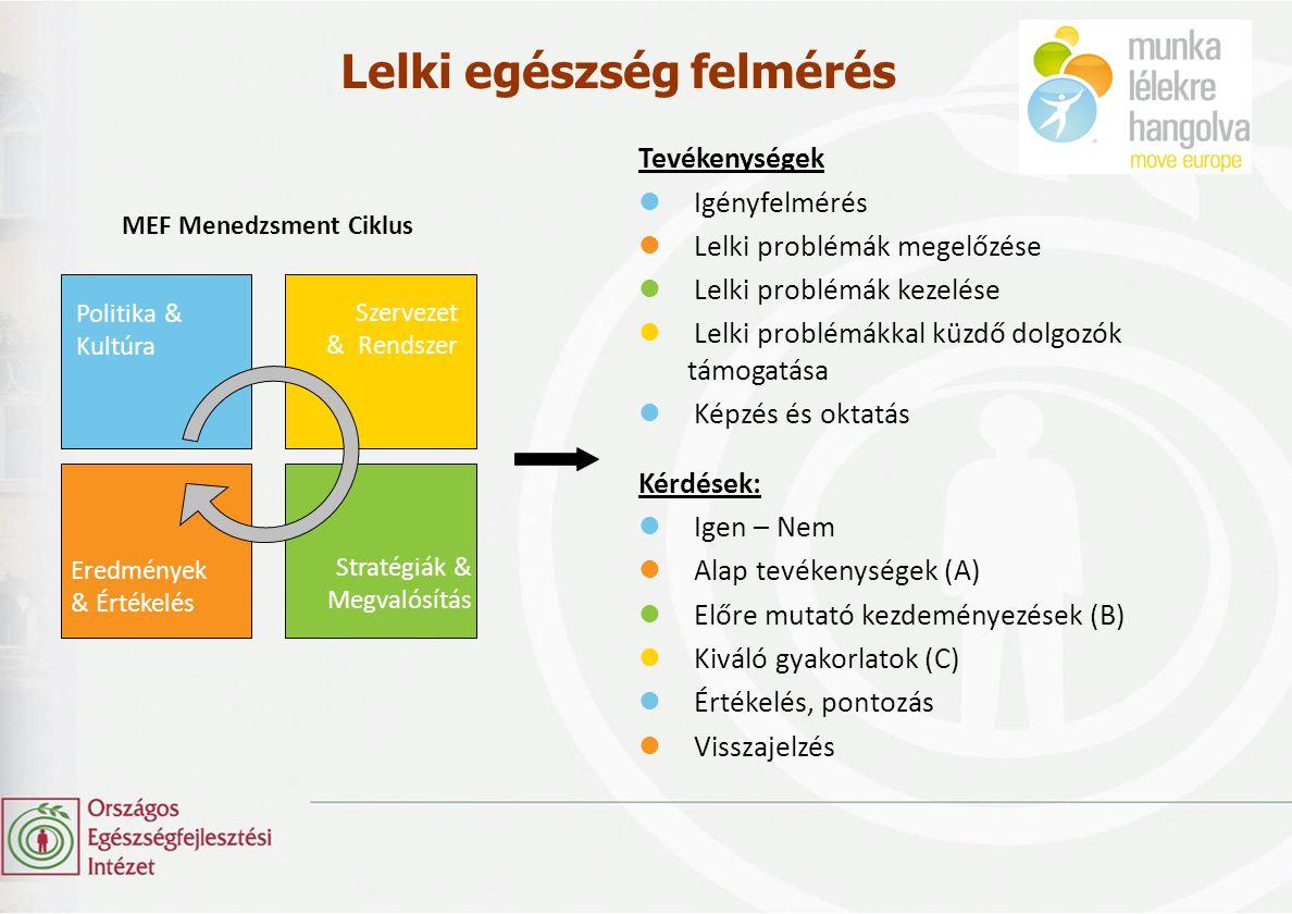 MEF Menedzsment Ciklus