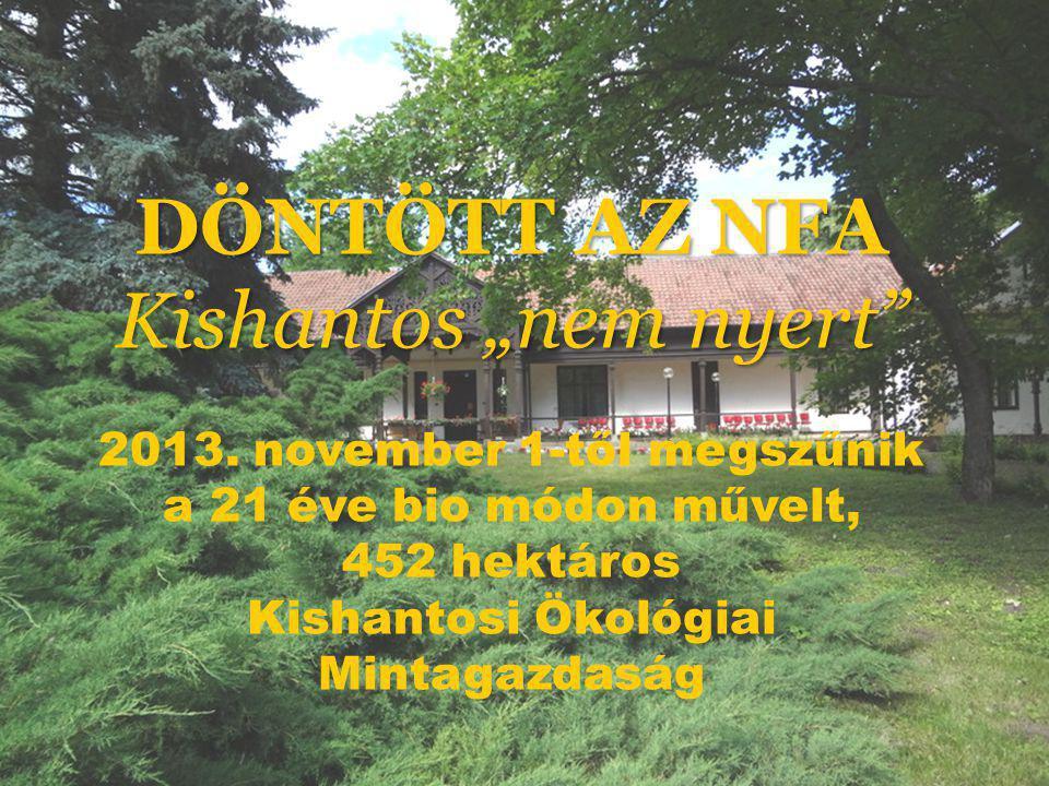 """DÖNTÖTT AZ NFA Kishantos """"nem nyert"""