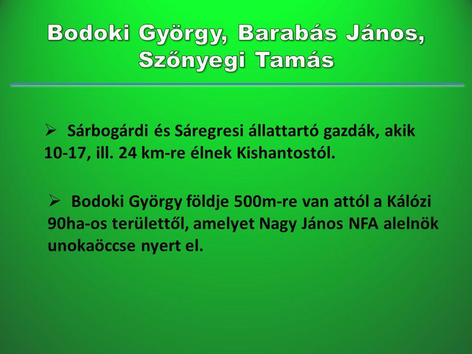 Bodoki György, Barabás János, Szőnyegi Tamás