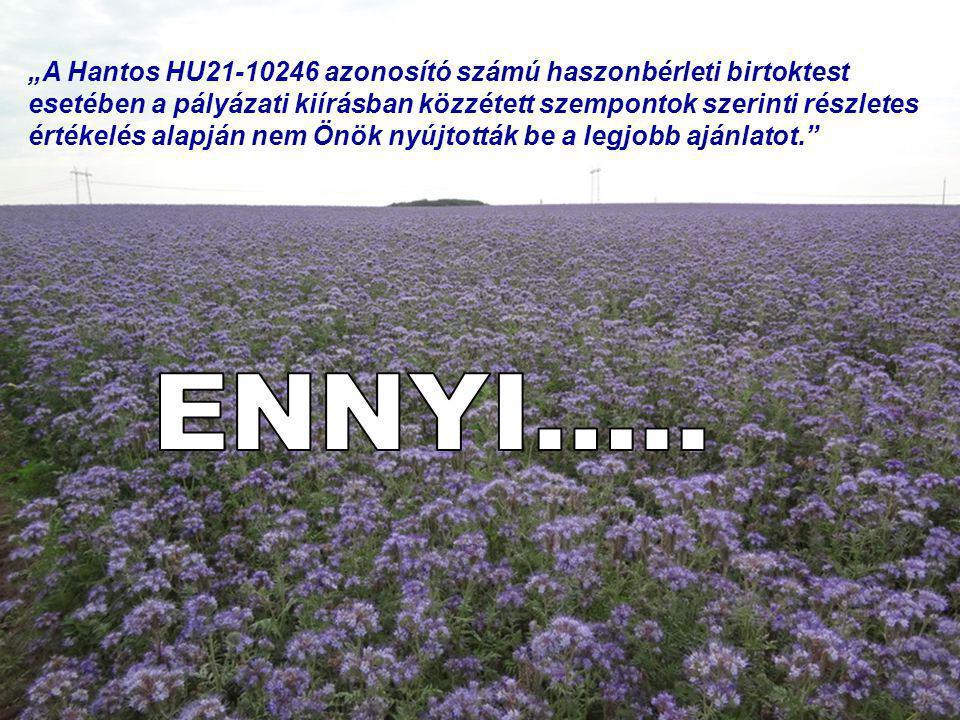 """ENNYI….. """"A Hantos HU21-10246 azonosító számú haszonbérleti birtoktest"""