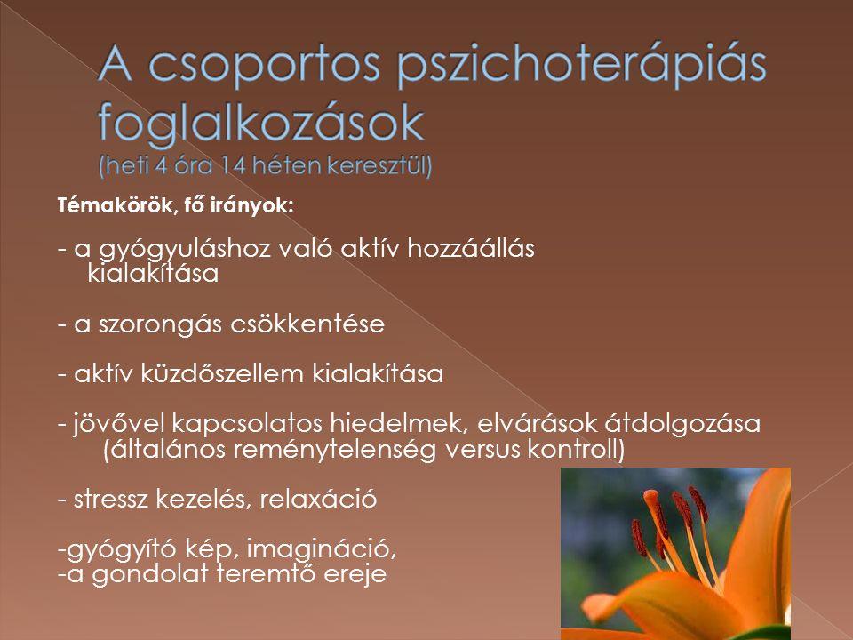 A csoportos pszichoterápiás foglalkozások (heti 4 óra 14 héten keresztül)