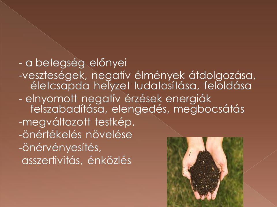 - a betegség előnyei -veszteségek, negatív élmények átdolgozása, életcsapda helyzet tudatosítása, feloldása.