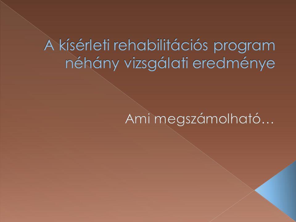 A kísérleti rehabilitációs program néhány vizsgálati eredménye