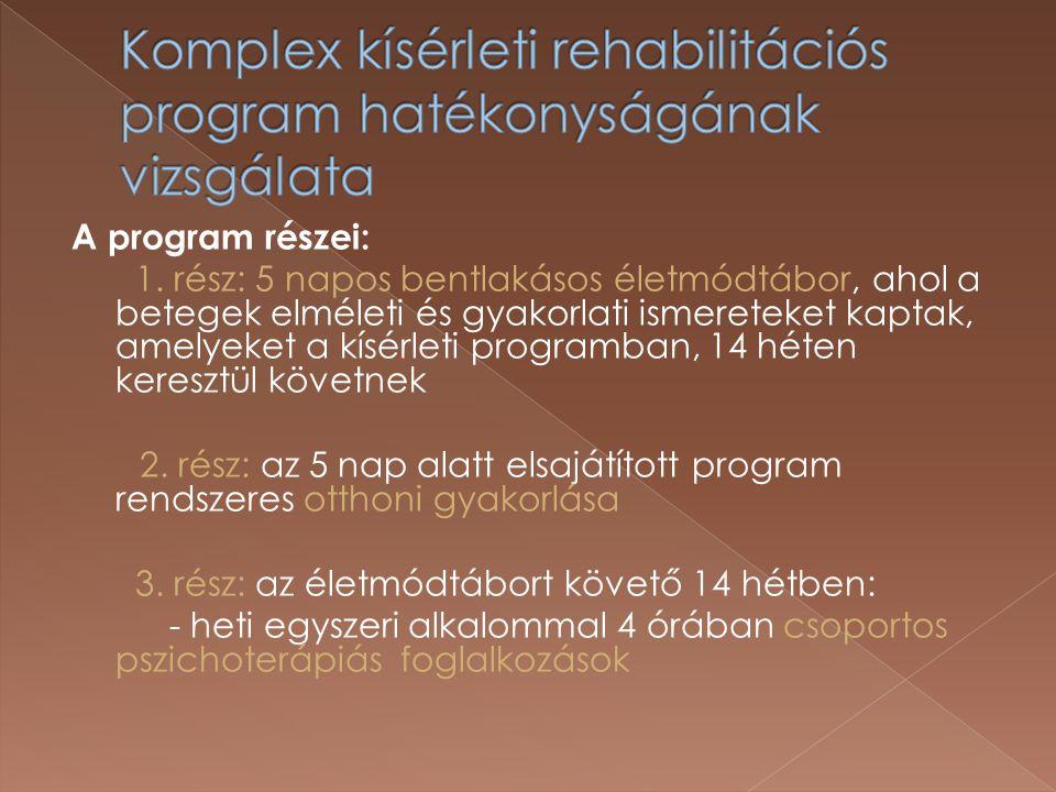 Komplex kísérleti rehabilitációs program hatékonyságának vizsgálata