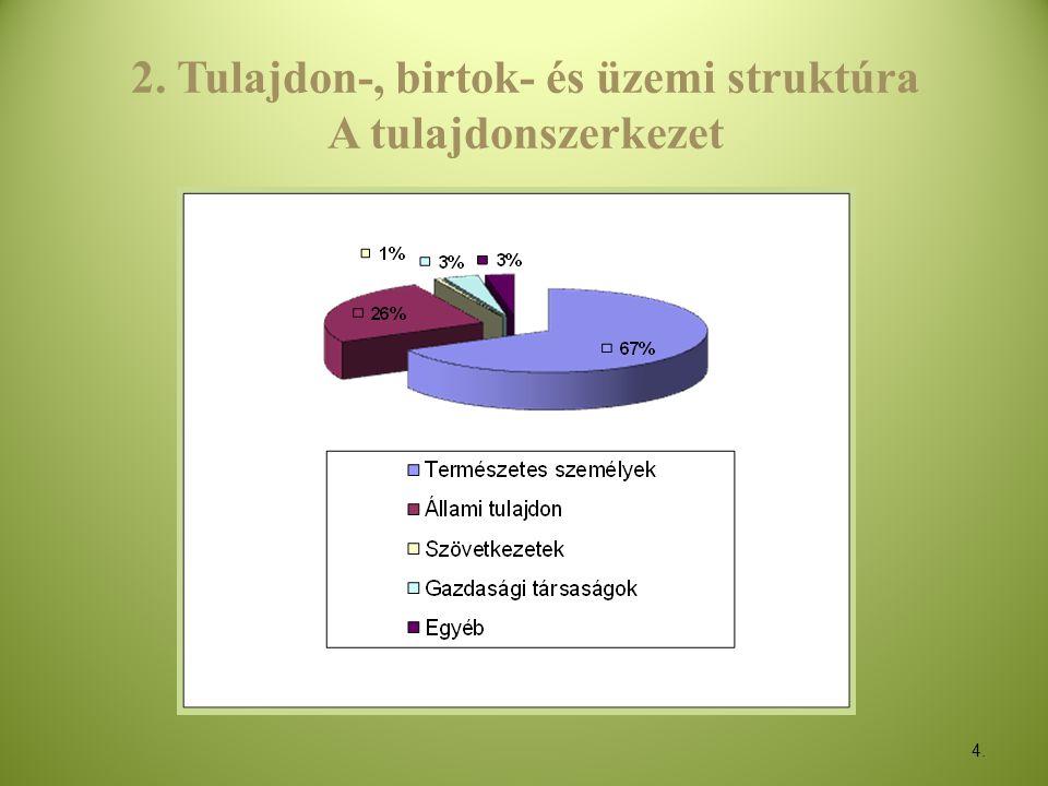 2. Tulajdon-, birtok- és üzemi struktúra A tulajdonszerkezet
