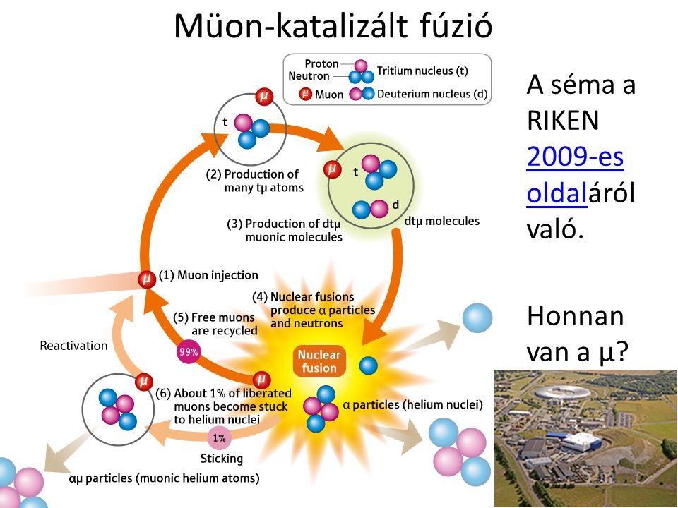 Müon-katalizált fúzió