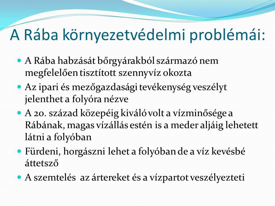A Rába környezetvédelmi problémái: