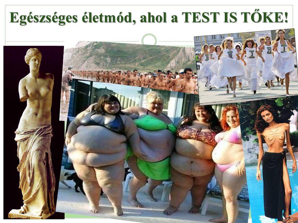 Egészséges életmód, ahol a TEST IS TŐKE!