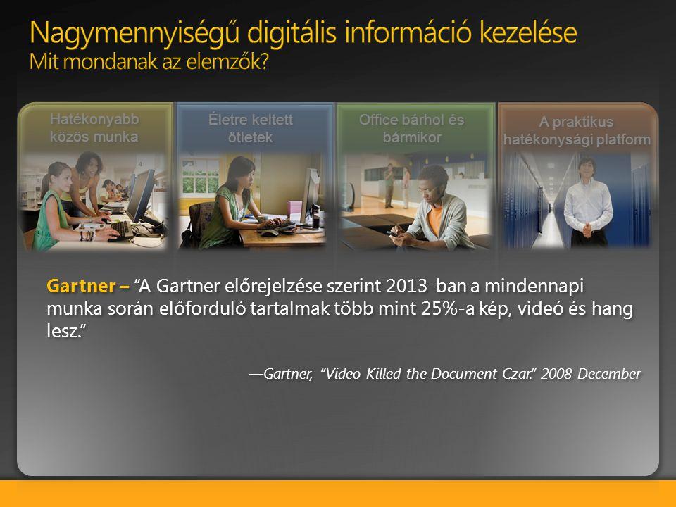 Nagymennyiségű digitális információ kezelése Mit mondanak az elemzők
