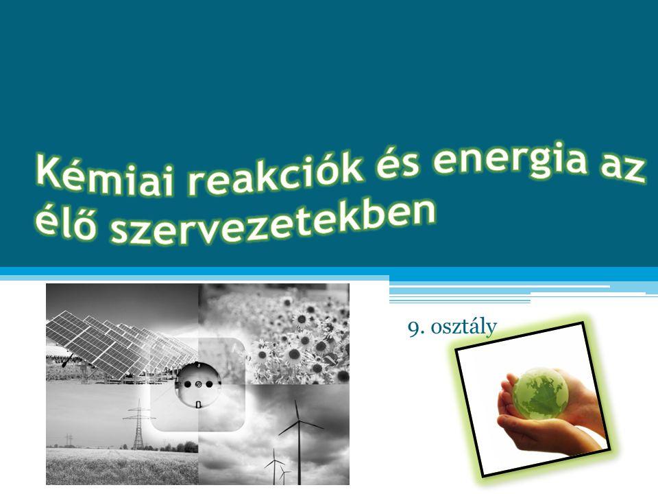 Kémiai reakciók és energia az élő szervezetekben