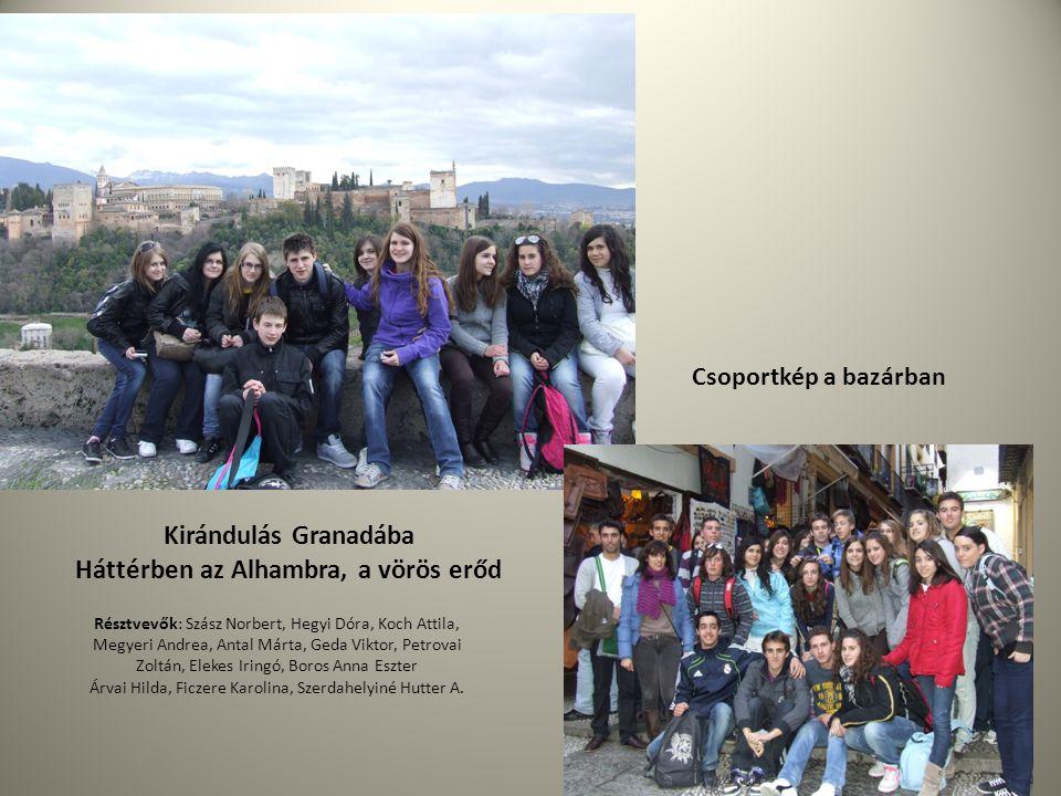 Háttérben az Alhambra, a vörös erőd