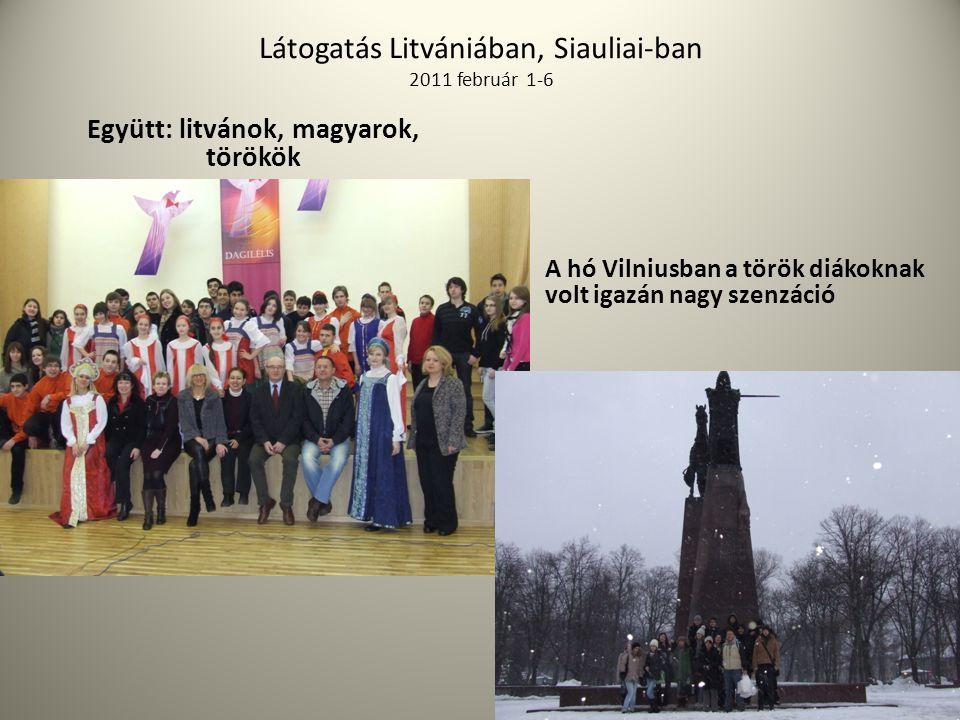 Látogatás Litvániában, Siauliai-ban 2011 február 1-6
