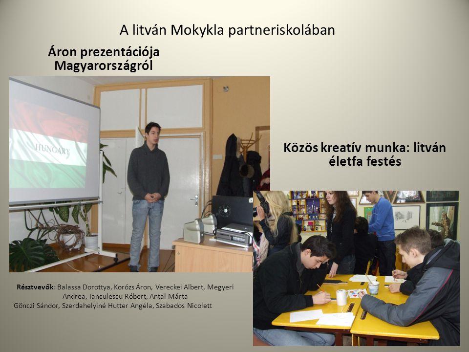 A litván Mokykla partneriskolában