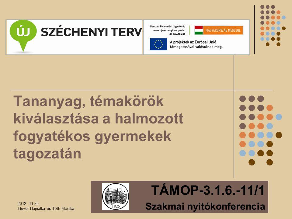 TÁMOP-3.1.6.-11/1 Szakmai nyitókonferencia