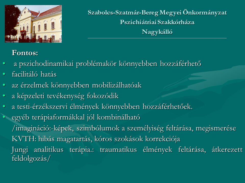 Szabolcs-Szatmár-Bereg Megyei Önkormányzat Pszichiátriai Szakkórháza