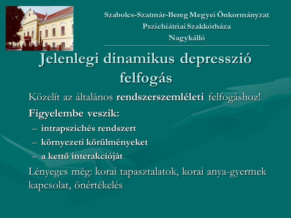 Jelenlegi dinamikus depresszió felfogás
