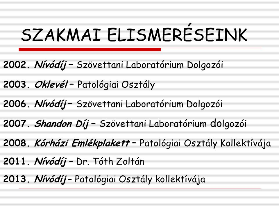 SZAKMAI ELISMERÉSEINK