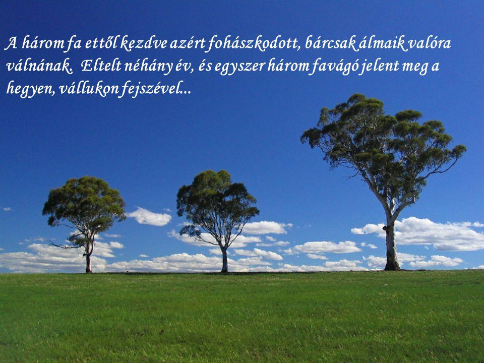 A három fa ettől kezdve azért fohászkodott, bárcsak álmaik valóra válnának.