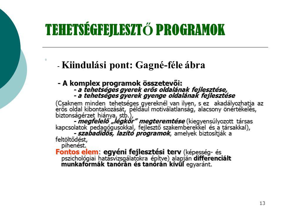 TEHETSÉGFEJLESZTŐ PROGRAMOK