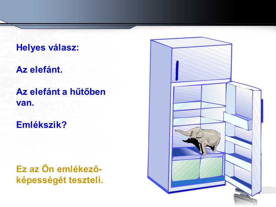 Helyes válasz: Az elefánt. Az elefánt a hűtőben van.