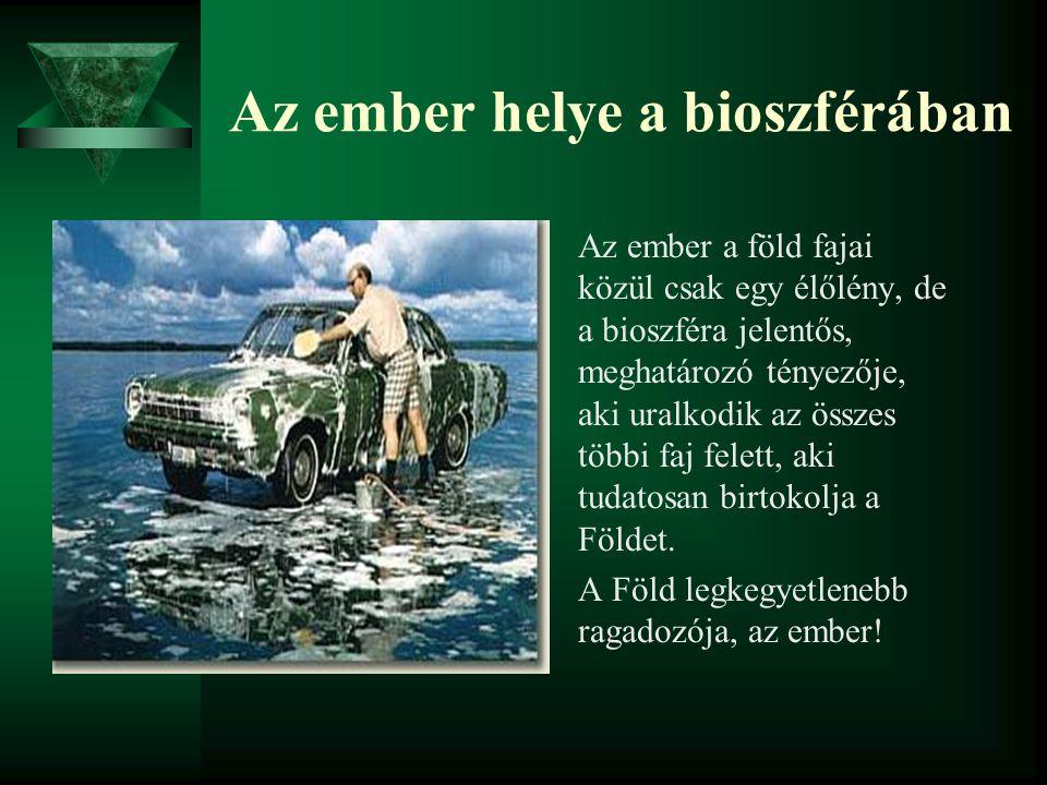 Az ember helye a bioszférában