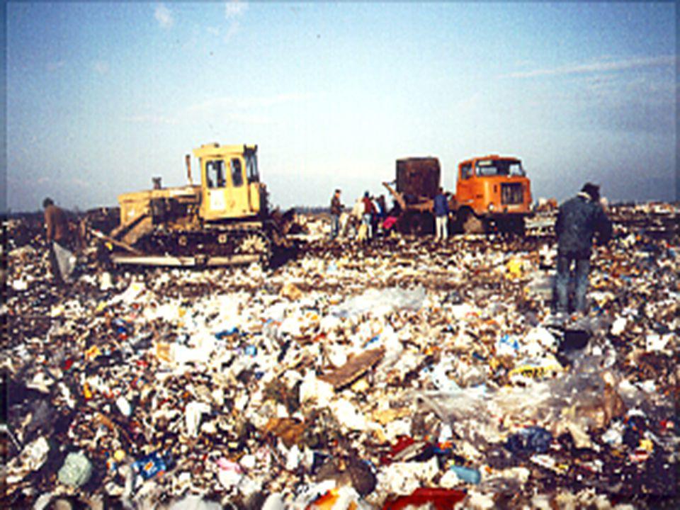 A hulladék felgyülemlésének hátrányos hatásai
