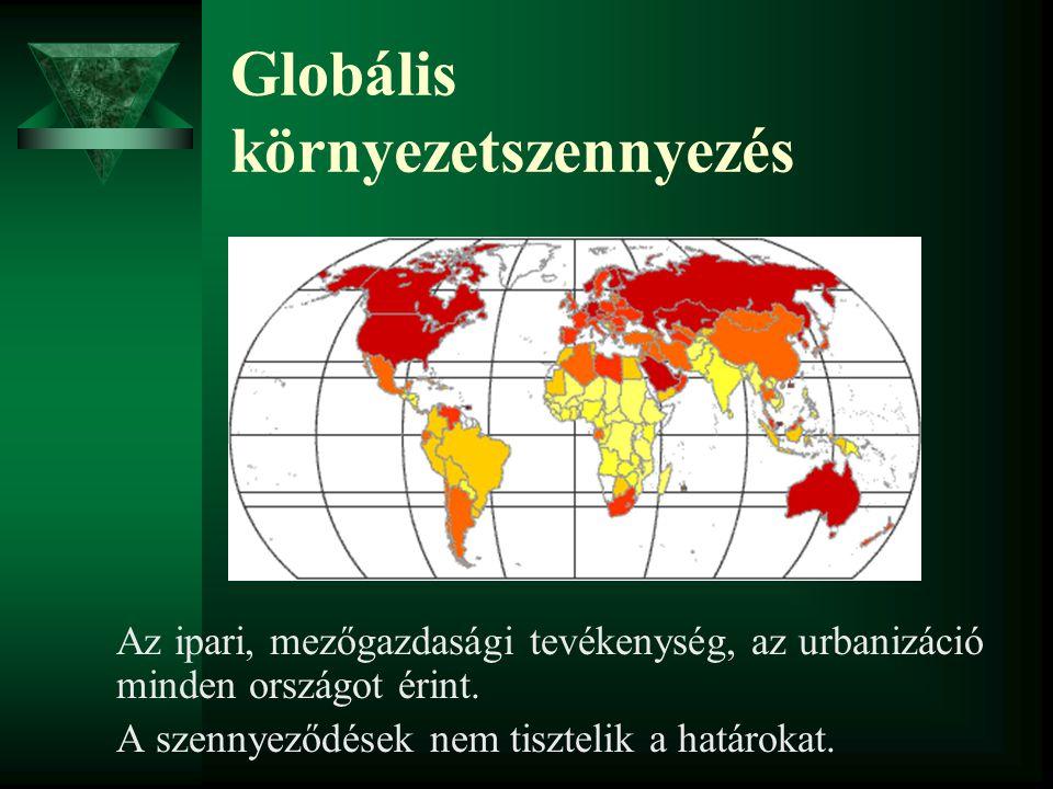 Globális környezetszennyezés