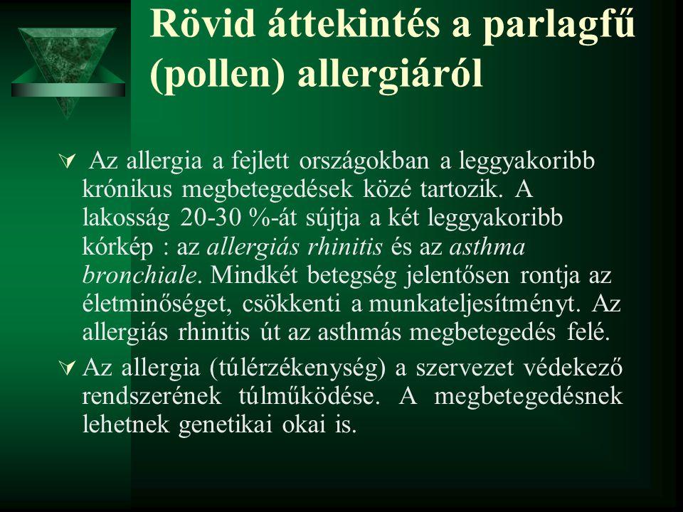 Rövid áttekintés a parlagfű (pollen) allergiáról